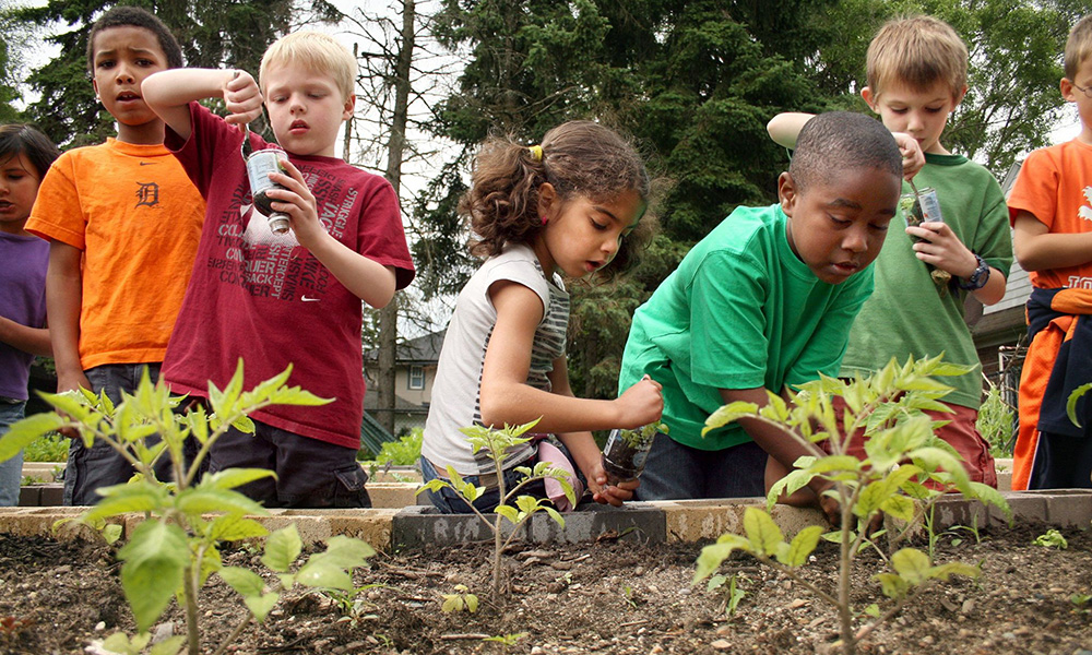 a sustainable way of gardening community