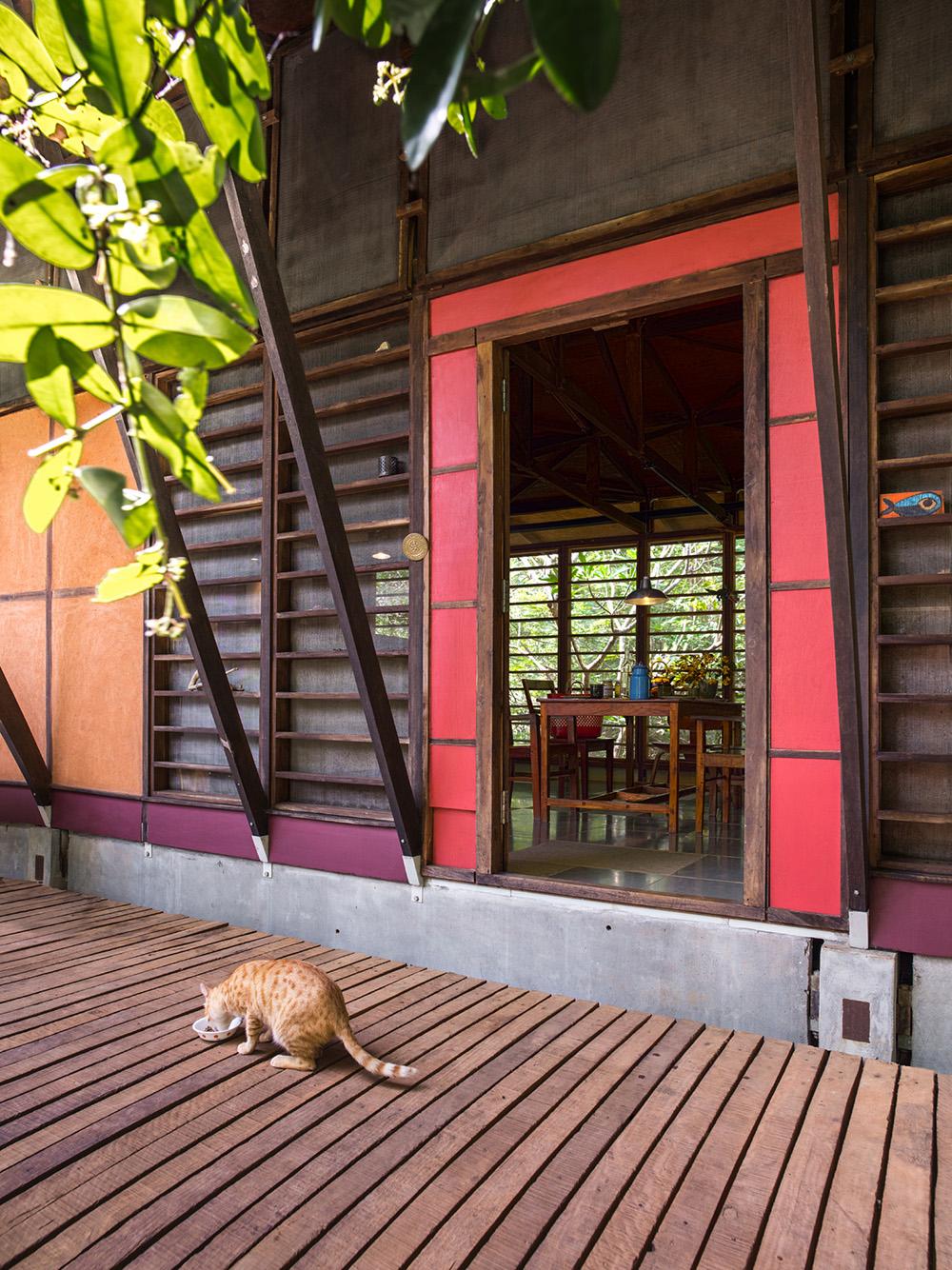 Auroville-01_1000